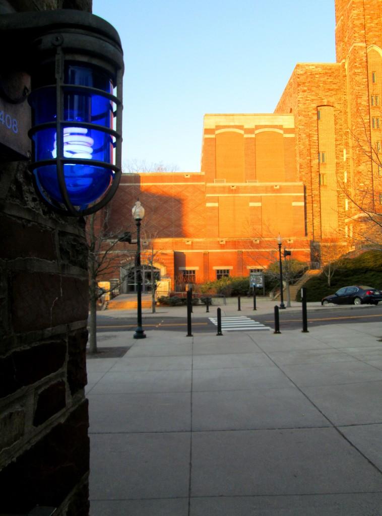 This Is Princeton University 016
