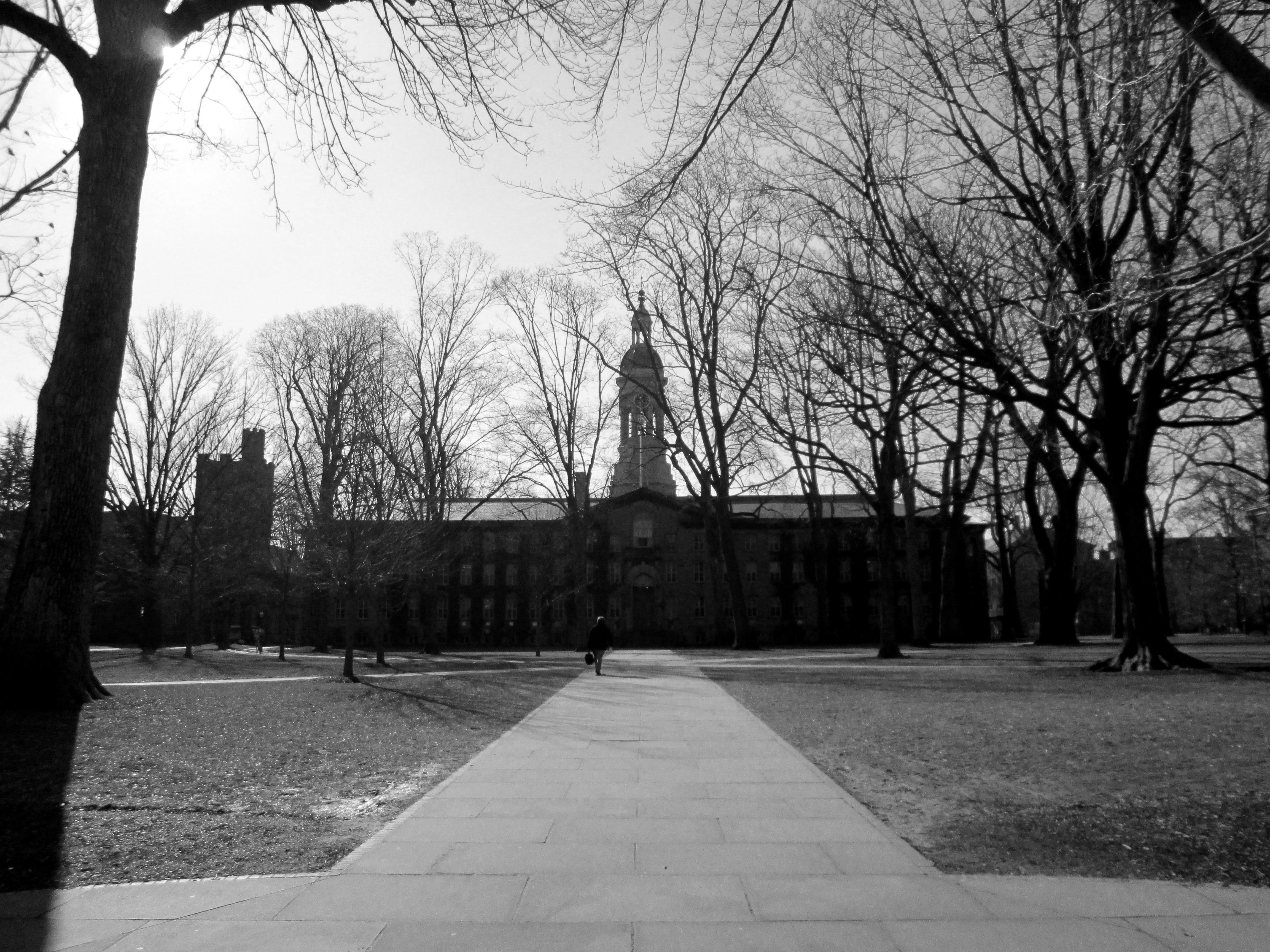 This Is Princeton University 259