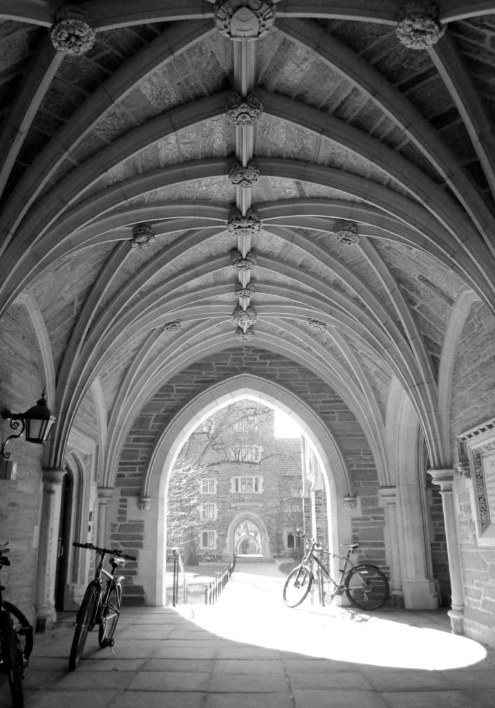 This Is Princeton University 278
