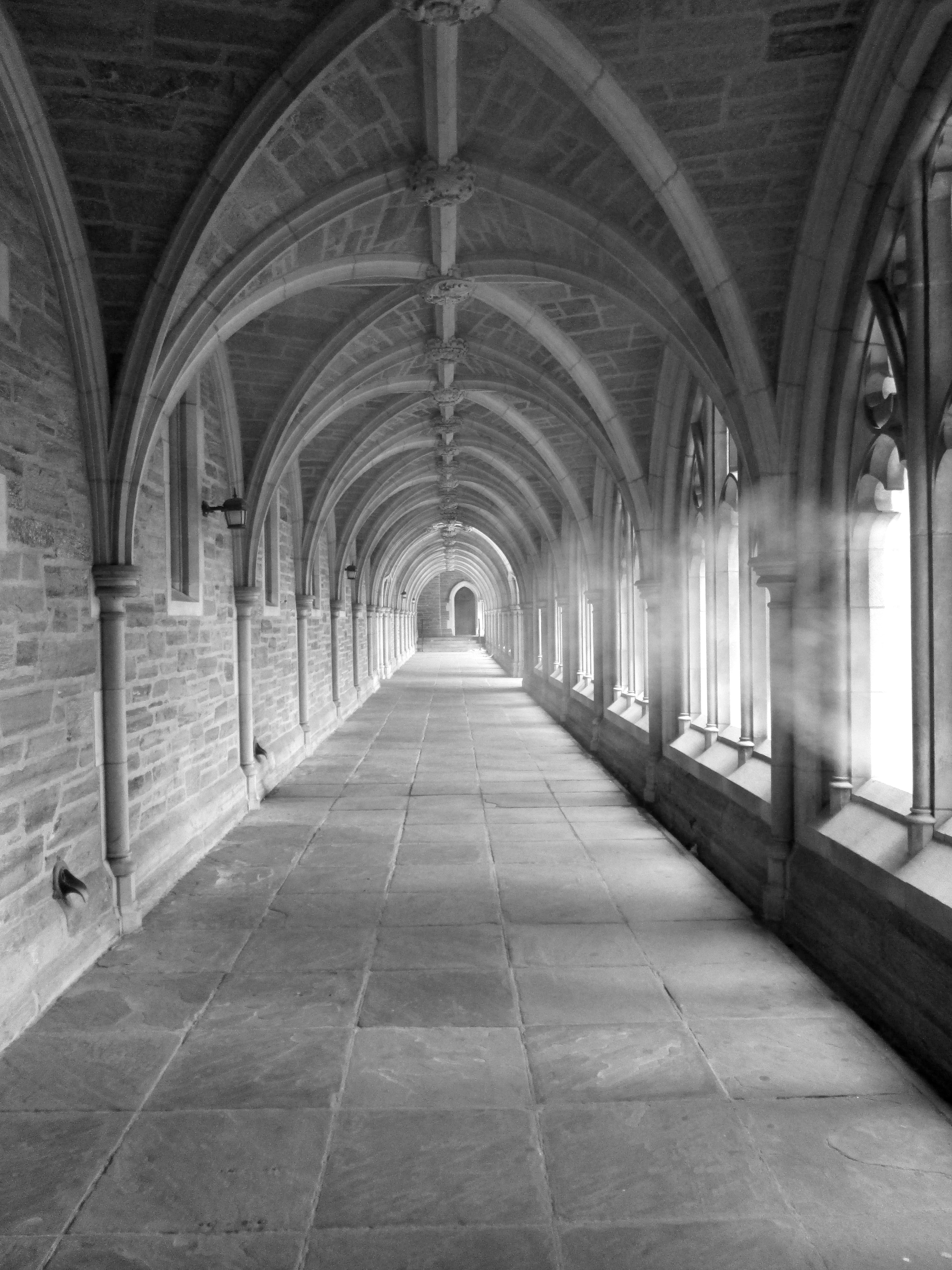 This Is Princeton University 306