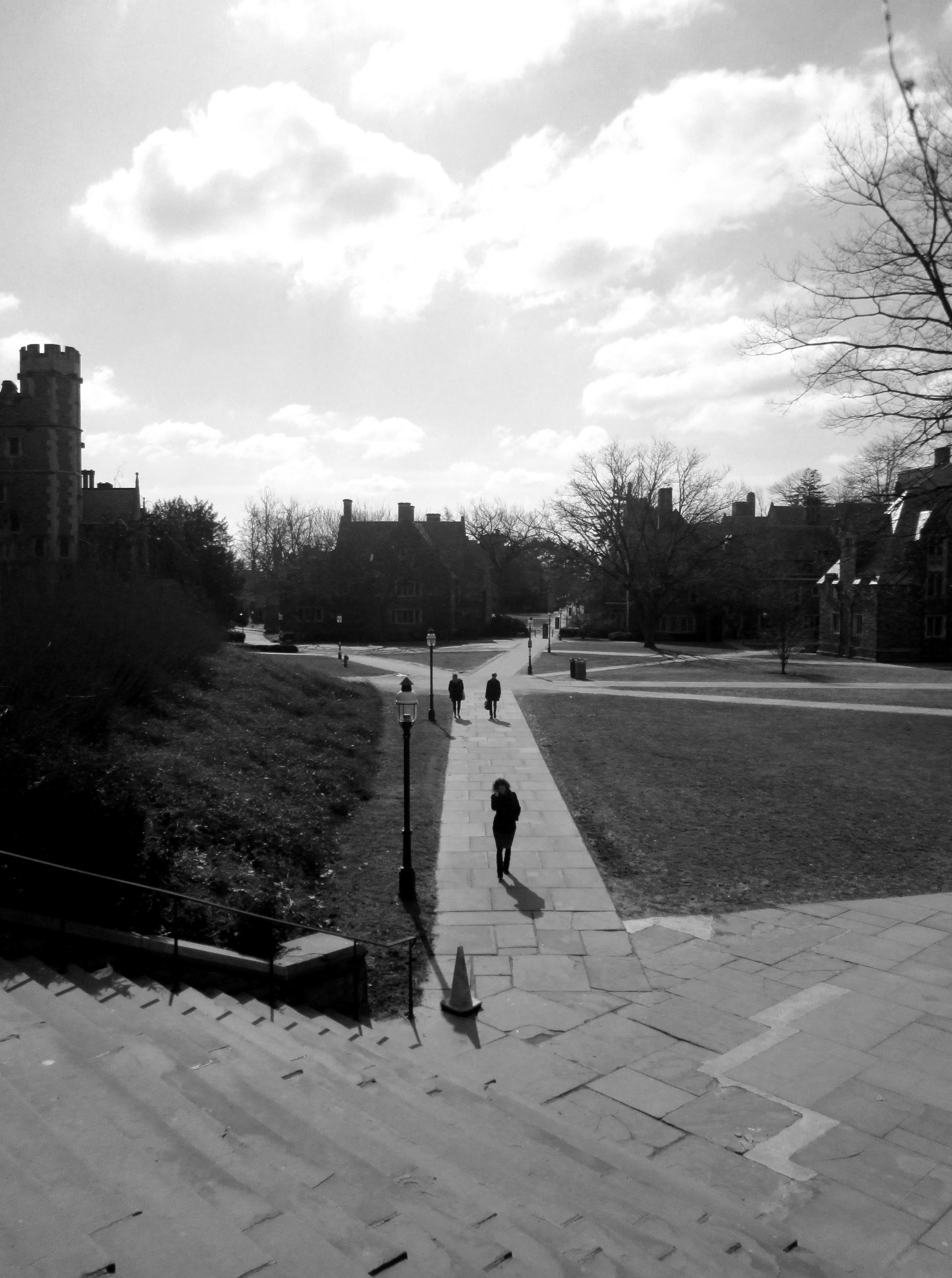 This Is Princeton University 318